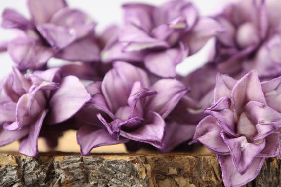 Purple Star Magnolia Sola Flowers - SET OF 10 , Purple Sola Flowers, Wood Sola Flowers, Magnolia Sola, Balsa Wood, Flowers for crafting