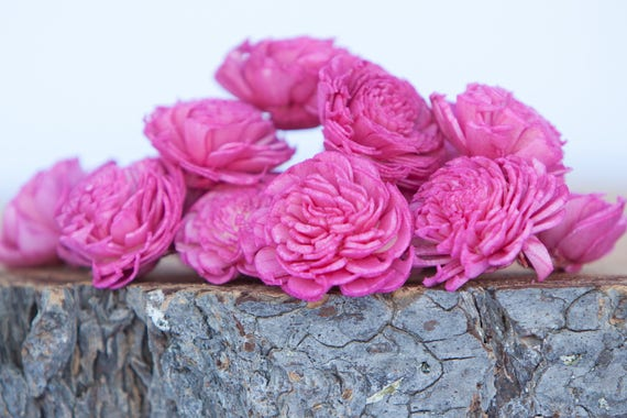 Hot Pink Mini Chorki Flowers - Set of 15 , Pink mini chorki sola flowers, sola flowers, balsa wood sola flowers, Fuchsia sola flowers
