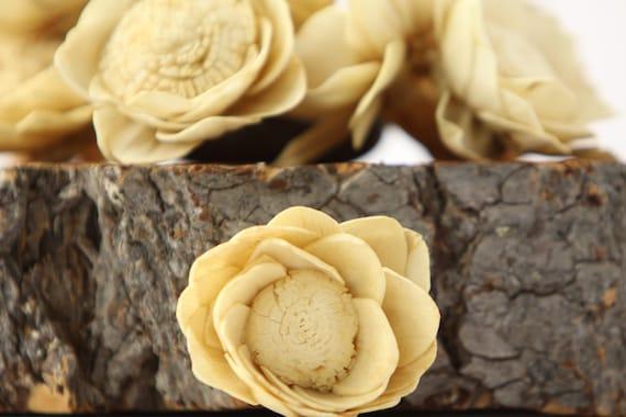 Tan Camellia Sola Flowers- SET OF 10