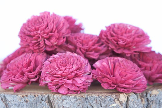 Red Large Chorki Sola Flowers - Set of 10, Red Sola Flowers, Chorki Sola Flowers, Wood Sola Flower, Flowers for Crafting, Craft Flowers
