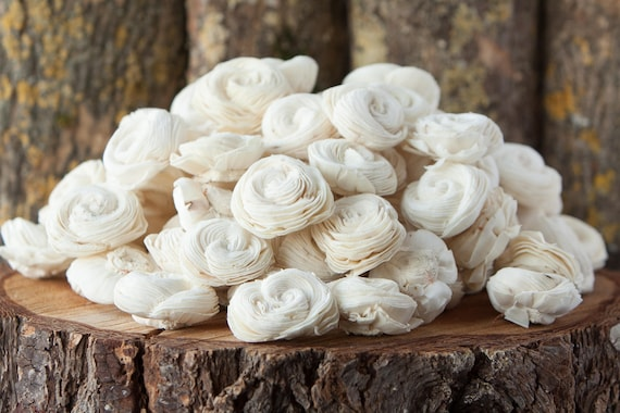 Bulk Shell Sola Flowers - SET OF 100 , Value Pack of Shell Sola Flowers