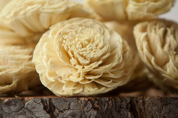 Pale Yellow Large Sola Flowers - Set of 10, Sola Flowers, Chorki Sola Flowers, Sola Flower, Wood Sola Flowers, Keepsake flowers, Wedding DIY