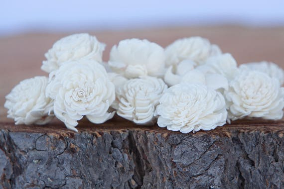 Ivory Mini Chorki Sola Flowers - Available in Sets of 15, 50 or 100