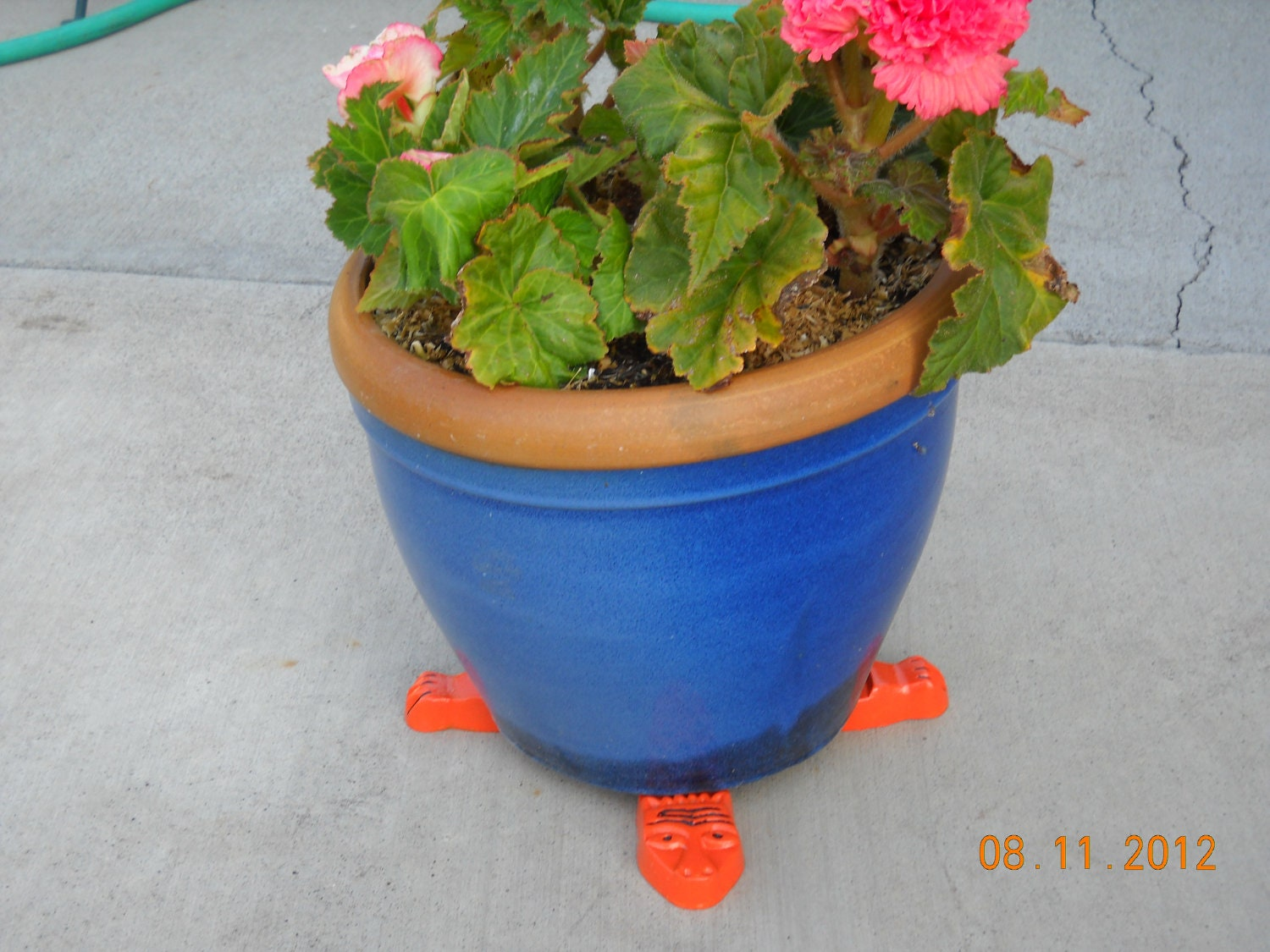 Lizard Planter Feet