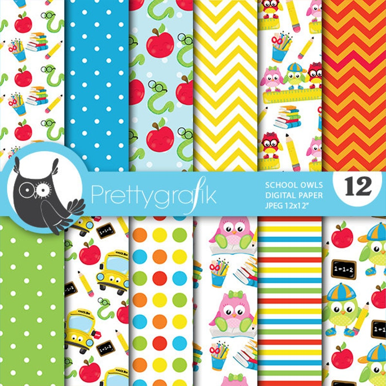 BUY 20 GET 10 OFF  School owls digital paper commercial use image 0