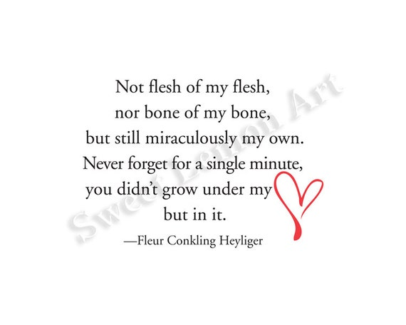 Not Flesh Of My Flesh Fleur Conkling Heyliger Adoption Etsy