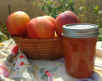 Nectarine Jam, Small Batch, Handcrafted,  Naturally grown, 8 oz jar, Oregon  Pacific Northwest