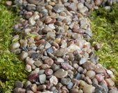 Fairy Garden pebbles stones, pathway rocks, terrarium supply, 8 ounces in weight (approximately 1 2 Cup measure), gravel floral accessories