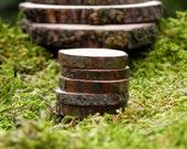 Miniature Stepping Stones, wood slices, set of 5, fairy garden miniatures, fairy garden accessories