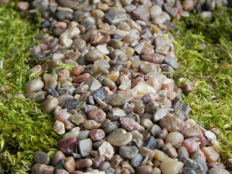 Fairy Garden Pebbles Stones, Pathway Rocks, Terrarium Supply, 8 Ounces In  Weight (approximately 1/2 Cup Measure), Gravel Floral Accessories