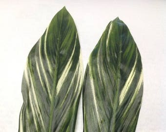 SILK FABRIC Ti Leaf For Polynesian Costumes. Perfect Pieces For Making Your Own Creations, Costumes, Hip Hei, Hair Pieces. 12 Leaves.