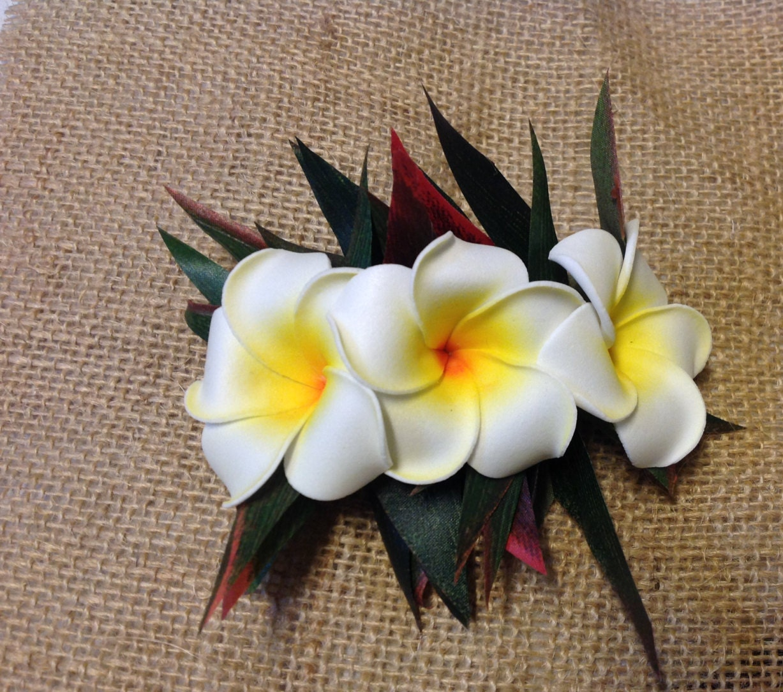 Hawaiian flowers hair clipumeriafrangipani flower silk etsy zoom izmirmasajfo