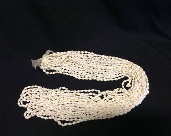 White Dove Tail Shells Necklace/Lei. Nasa Shell Lei. ONE NECKLACE ONLY.