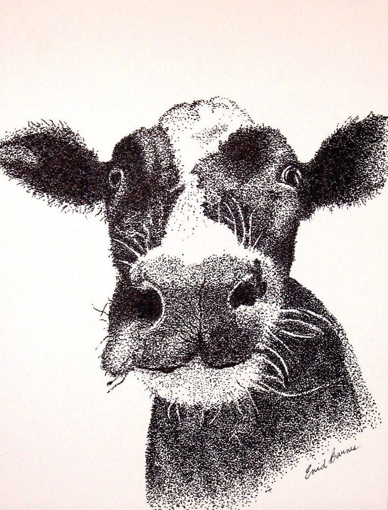Cow Original Pen And Ink Pointillism Drawing Etsy