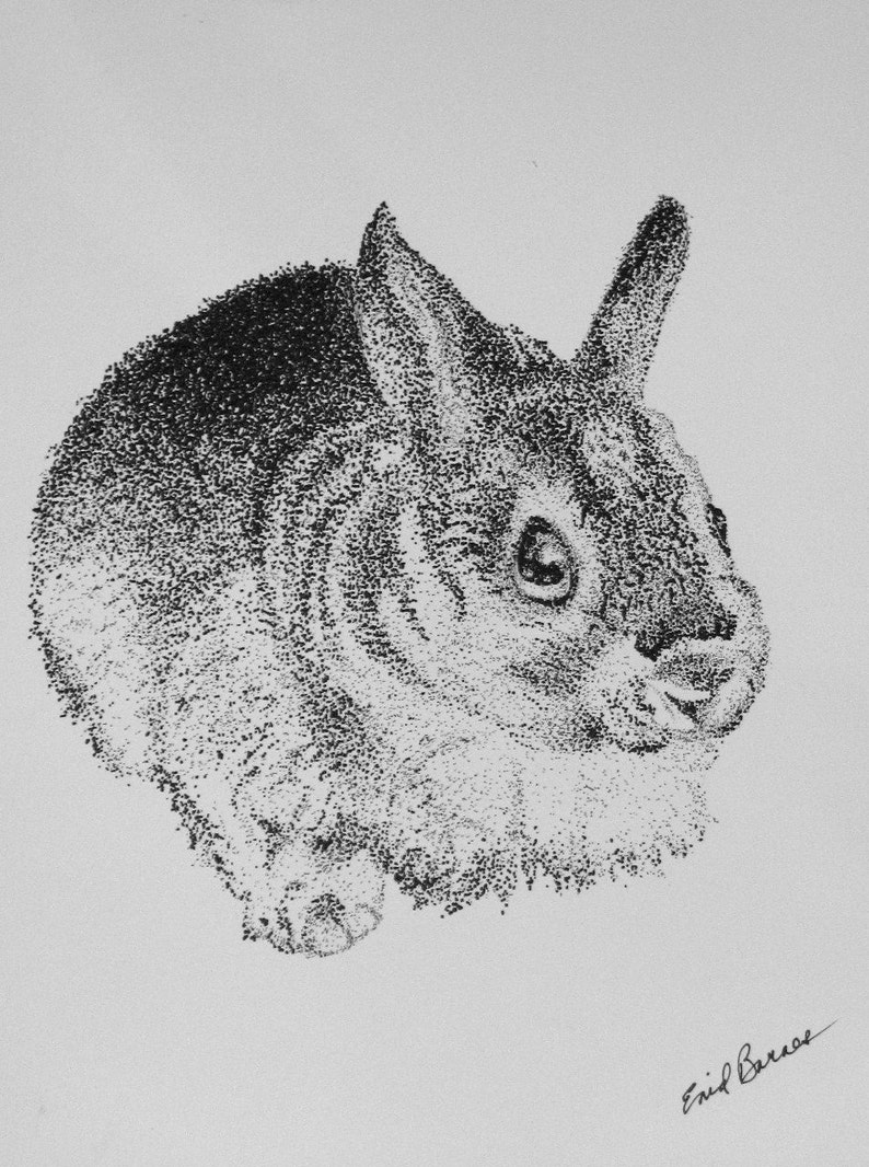Original Pen And Ink Pointillism Drawing Of A Bunny Rabbit Etsy