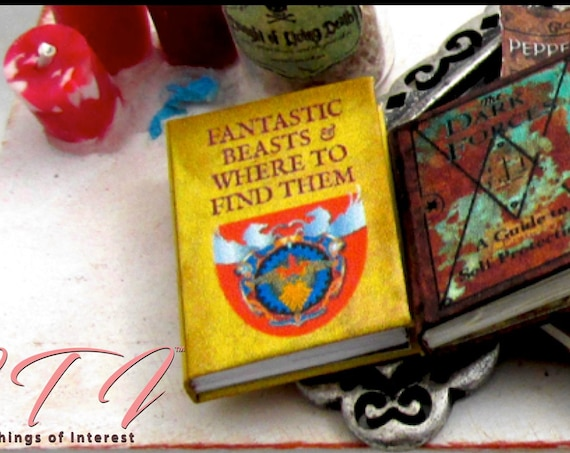FANTASTIC BEASTS and WHERE to Find Them 1:6 Scale Illustrated Readable Book Magic Witch Fortune Teller Potter Popular Boy Wizard Barbie