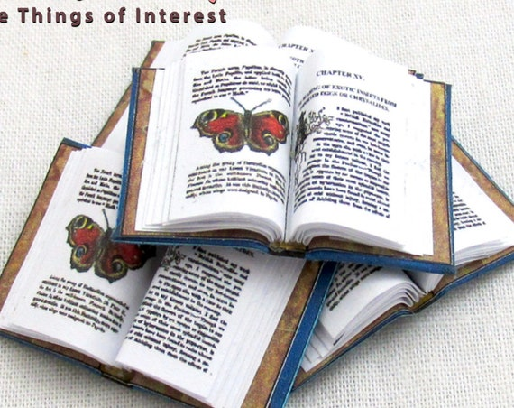 Open Book BUTTERFLY HOME Miniature Book Dollhouse 1:12 Scale Illustrated Doll Book Science Study