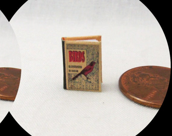 1:24 Scale BIRDS ILLUSTRATED Miniature Book Dollhouse Color Illustrated Book Birding Bird Watching
