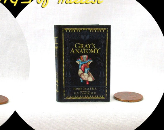 GRAY'S ANATOMY 1:6 Scale Book Readable Illustrated Miniature Book Doctor Health Medical Nurse Biology Human Body