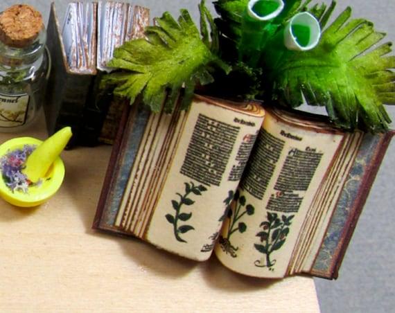 Open Book- BOOK OF HERBS Illustrated Miniature Dollhouse 1:12 Scale Book Latin Ortus Sanitatis Medieval Herbal Medicine Plant Herbalist