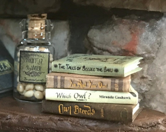 WHICH OWL? Magical Textbook Miniature Dollhouse 1:12 Scale Illustrated Readable Magic Popular Boy Wizard Potter Witch Fortune Teller Gypsy