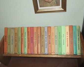 Edwardian Oak Book Trough, Vintage Book Rack, Antique Book Shelf, Bookshelf