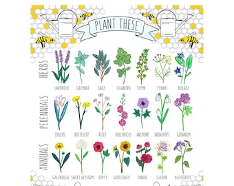 """Plant These to Help Save Bees 16x20"""" Poster *OR* 11x14"""" Print"""