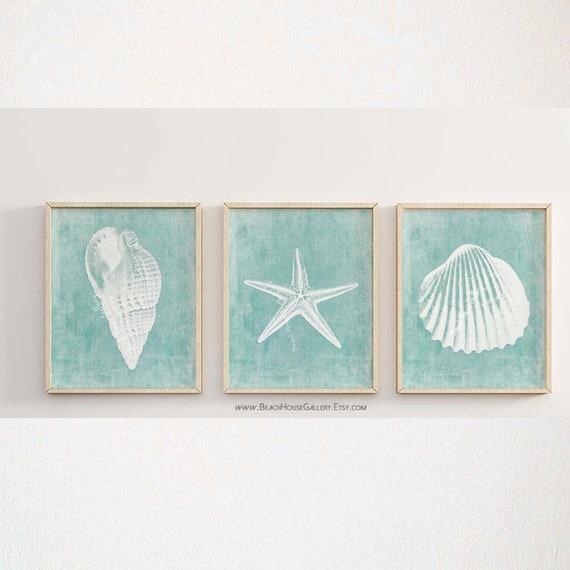 Modern Seashell Wall Art