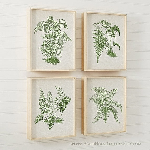 Green Ferns Print Set Green Fern Wall Art Fern Botanical | Etsy