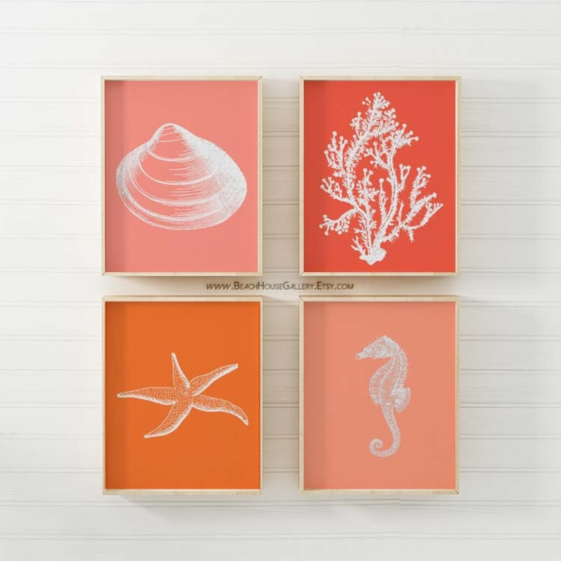 Coral Unframed Seahorse Prints Starfish Set of Four Photos 8x10