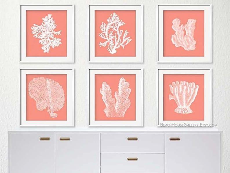 Ensemble De Six Corail Imprime Blanc Corail Blanc Corail Etsy
