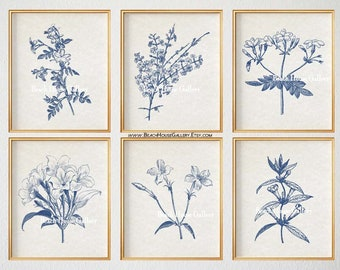Blue Botanical Prints, Blue Wall Art, Vintage Botanical Prints, Custom Botanical Plates, Jasmine Prints, Wall Art for Above Couch, Set of 6