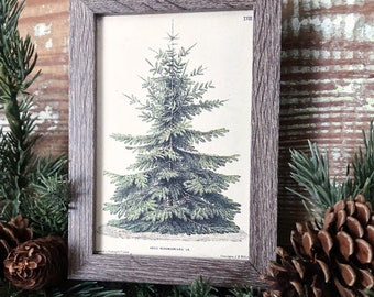 Vintage Christmas Sign PINE TREE Frame Farmhouse Christmas Decor Barn Wood Rustic Primitive Christmas Sign