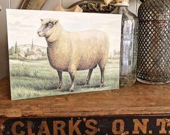 Vintage SHEEP Wood Sign Primitive Farmhouse Decor Illustration Book Page Wall Art Print Pasture Church Farm Antique Image