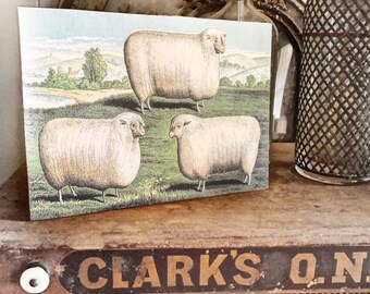 Vintage SHEEP HERD Wood Sign Primitive Farmhouse Decor Illustration Book Page Wall Art Print Pasture Farm Antique Image