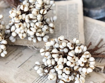 Tallow Berries TEXAS TALLOW Dried White Berry Bundle Bouquet Floral Supplies Farmhouse Home Decor Branch CHRISTMAS Decor Wreath Wedding