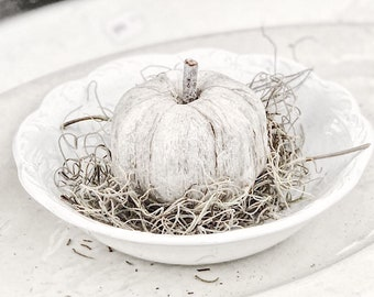 Spanish Moss Farmhouse Decor Southern Texas Fall Christmas Decor Halloween Package Filler Air Plant Primitive Decor