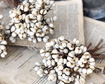 Tallow Berries TEXAS TALLOW Dried White Berry Bundle Bouquet Floral Supplies Farmhouse Home Decor Branch  Christmas Wreath Wedding USA