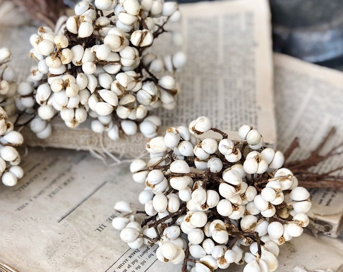Featured listing image: Tallow Berries TEXAS TALLOW Dried White Berry Bundle Bouquet Floral Supplies Farmhouse Home Decor Branch  Christmas Wreath Wedding USA