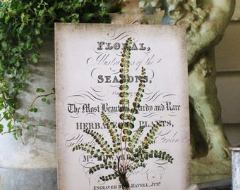 Vintage FERN Botanical Wood Sign Natural History Book Page Wall Art Print Farmhouse Decor Naturalist Fixer Upper Decor Garden Sign