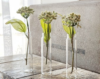 Vintage Glass Vial Bottles SET of 6 French Bud Vase Farmhouse Garden Decor Clear Craft Supplies
