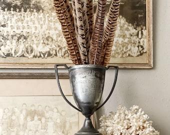 Pheasant Feathers Bundle Floral Supplies Farmhouse Home Decor