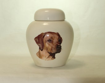 Rhodesian Ridgeback  Cremation Urn, Ceramic Jar with Lid, Pet or Dog Small Urn for Ashes, Keepsake Urn, Art Pottery, handmade