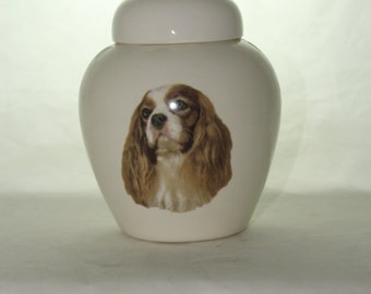 King Charles Cremation Urn, Ceramic Jar with Lid, Pet or Dog Small Urn for Ashes, Keepsake Urn, Art Pottery, handmade