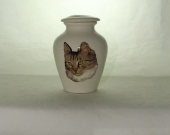 Tricolor long hair tabby Cat on Ceramic Jar with Lid, Small Cremation Urn, Keepsake Urn, Baby or Infant Urn. Handmade small Pet Urn