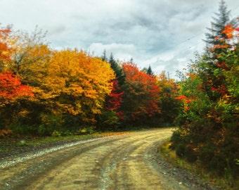 Backroads in Autumn