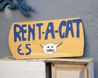 """Funny Animal Photography """"Rent A Cat, Naxos, Greece"""""""