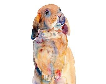 Rabbit - 8x10in - Animal  Painting - Watercolor  Painting - Nursery Art Print