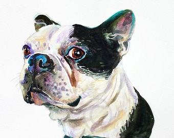 Custom pet portrait, pet portrait, , dog portrait, pet art, dog art, Boston terrier