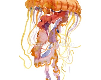 Jelly Fish, Watercolor Painting, Sea life Print,Art Print ,  Home Decor